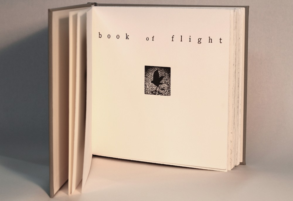 book of flight by Martin King