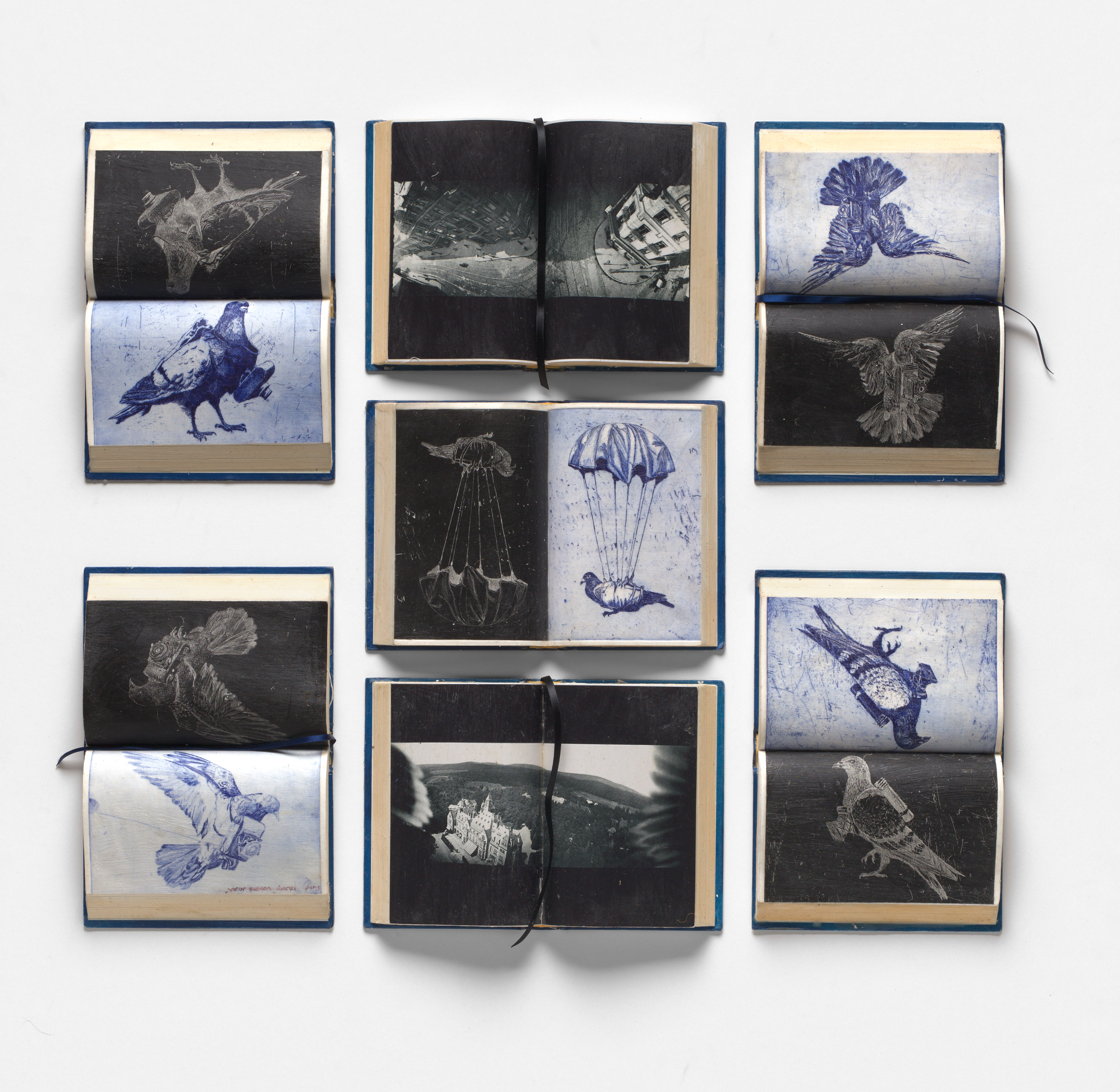 war pigeon diaries, etching, relief etching, photographs, hard cover books, ribbon, wax